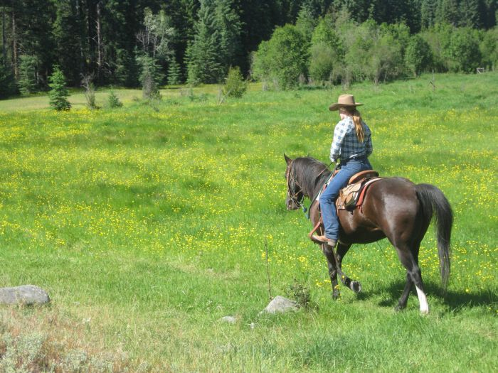 Cranbrook Cattle and Guest Ranch