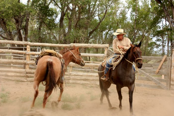 Zapata Working Ranch