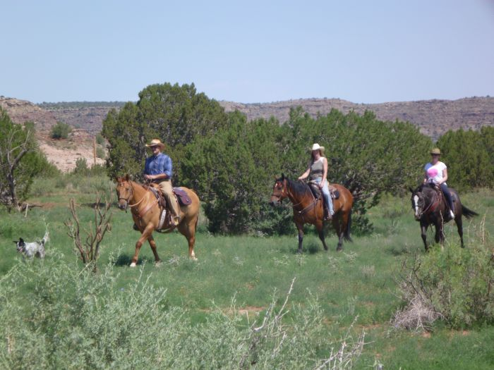 Southwest Working and Guest Ranch New Mexico