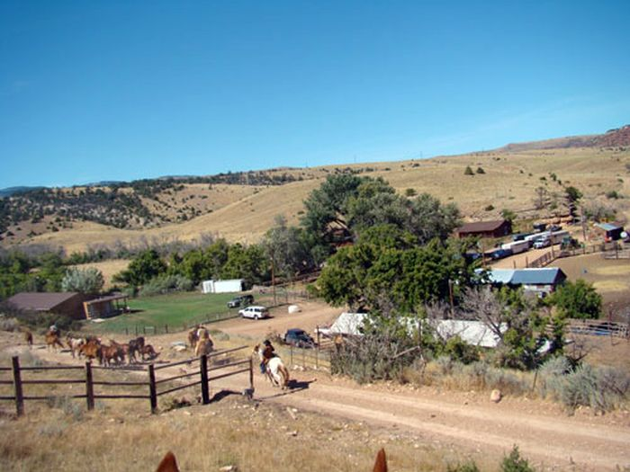 Dryhead Working Ranch