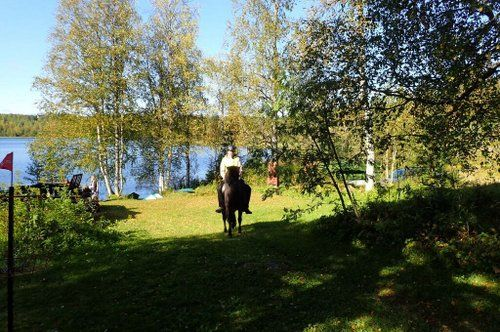 Riding and activity week in the heart of Finland